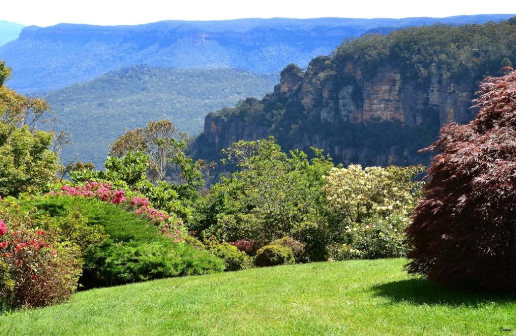Photo: Blue Mountains Gazette